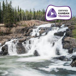 Kanban Systems Improvement (KSI)